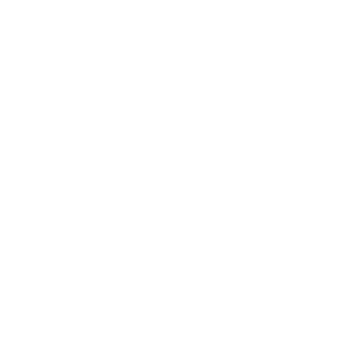Icon FEESTJE
